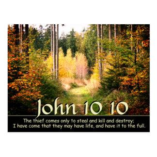 Cartão Postal John 10 verso de 10 bíblias, trajeto de floresta
