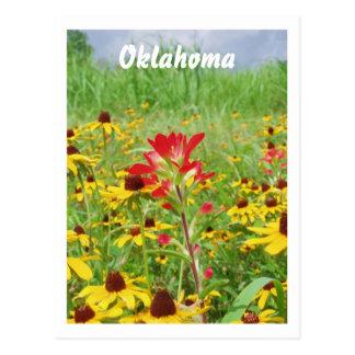 Cartão Postal july2007 paintbursh indiano, Oklahoma