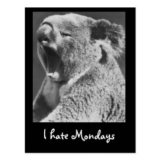 Cartão Postal Koala de bocejo