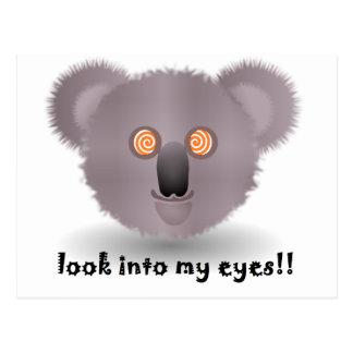Cartão Postal koala hipnótico