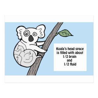 Cartão Postal Koala instável dos cérebros