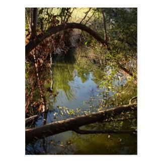 Cartão Postal Lago 4 park da garganta de Franklin