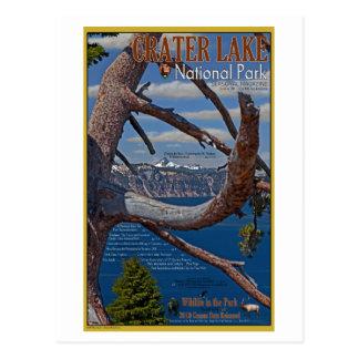 Cartão Postal Lago crater - verão 2011