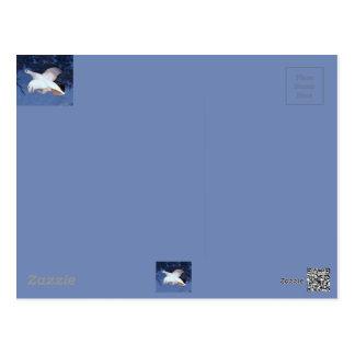 Cartão Postal Lagópode dos Alpes do salgueiro de Alaska