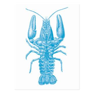 Cartão Postal Lagosta azul