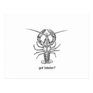 Cartão Postal lagosta obtida?