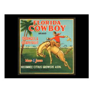 Cartão Postal Laranjas do vaqueiro de Florida & anúncio do
