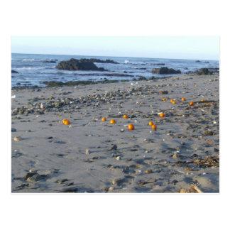 Cartão Postal Laranjas em uma praia espanhola