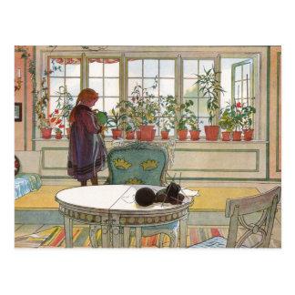 Cartão Postal Larsson: Flores no Windowsill
