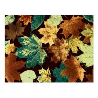 Cartão Postal Leaves áureas
