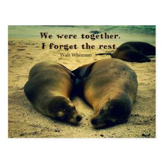 Cartão Postal Leões de mar das citações do casal do amor na