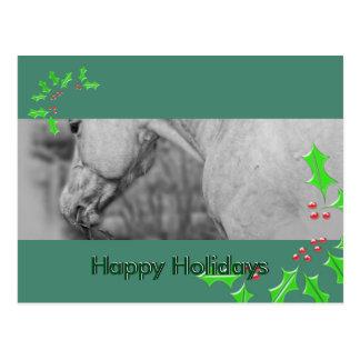 Cartão Postal Levemente o Dun Dapples (o Natal)