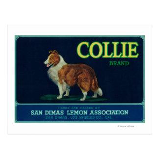 Cartão Postal Limão LabelSan Dimas do Collie, CA