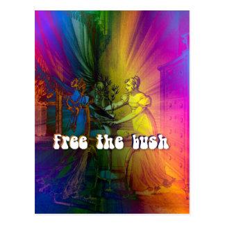 Cartão Postal Livre Bush