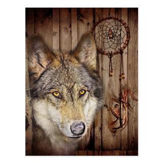 Cartão Postal Lobo ideal ocidental do indiano do nativo