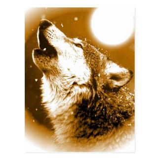 Cartão Postal Lobo só que urra na lua