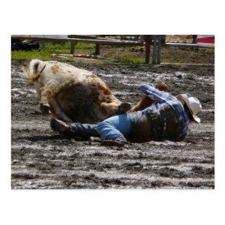 Cartão Postal Luta do boi do vaqueiro do rodeio