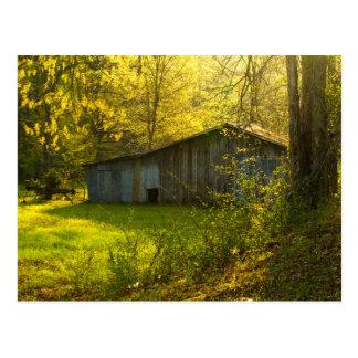 Cartão Postal Luz rural da manhã do primavera de Tennessee