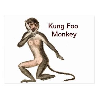 Cartão Postal Macaco de Kung Foo