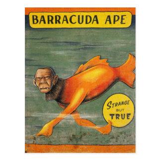 Cartão Postal Macaco do Barracuda