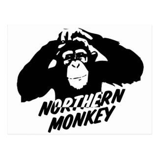 Cartão Postal Macaco do norte
