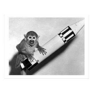 Cartão Postal Macaco - NASA - os anos 50