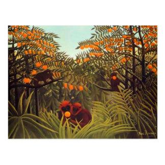 Cartão Postal Macacos de Rousseau no bosque alaranjado
