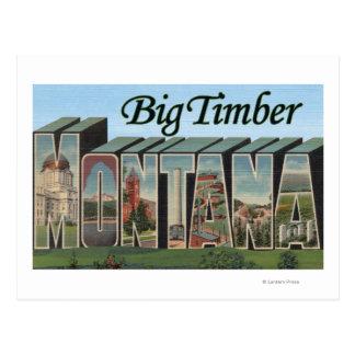 Cartão Postal Madeira grande, Montana - grandes cenas da letra