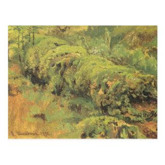 Cartão Postal Madeira Mossy por Ivan Shishkin