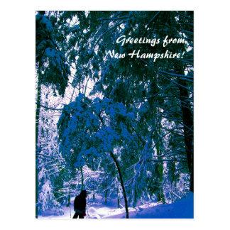 Cartão Postal Madeiras azuis, NH