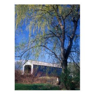 Cartão Postal MÃES superiores de Berkshires da ponte coberta de