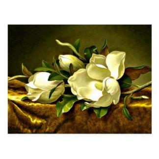 Cartão Postal Magnólias no pano de veludo do ouro, pintura das