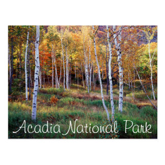Cartão Postal Maine, parque nacional do Acadia, outono