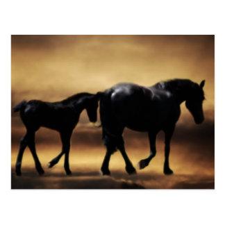 Cartão Postal Mamã dos cavalos e I
