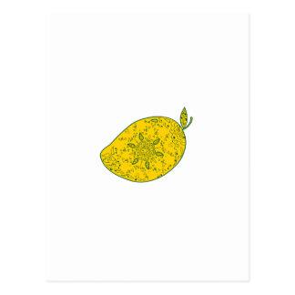 Cartão Postal Mandala da fruta da manga