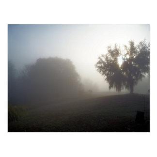 Cartão Postal manhã nevoenta adiantada apenas no nascer do sol