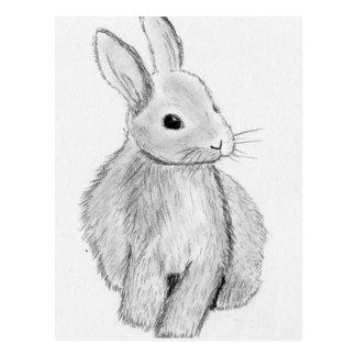 Cartão Postal Mão original coelho tirado