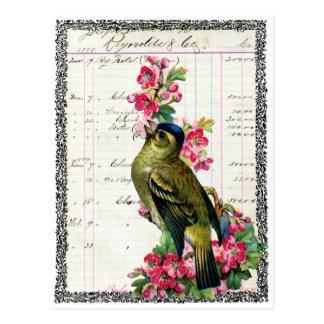 Cartão Postal Mapa postal pássaro