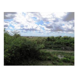 Cartão Postal Mar da grama