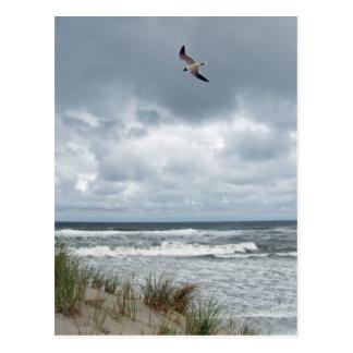 Cartão Postal Mar tormentoso
