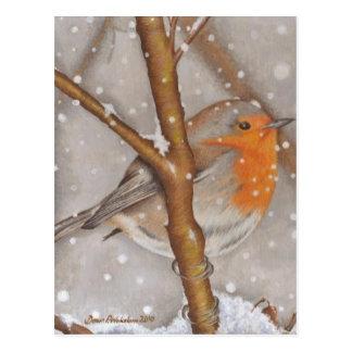 Cartão Postal Maravilha do inverno