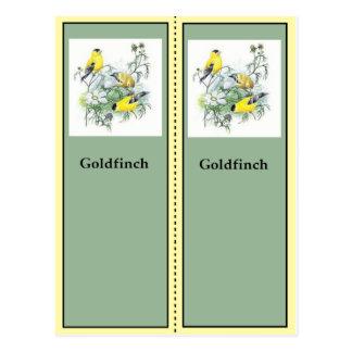 Cartão Postal Marcador de Birding do Goldfinch