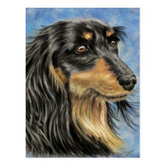 Cartão Postal Marcus - arte de cabelos compridos do Dachshund