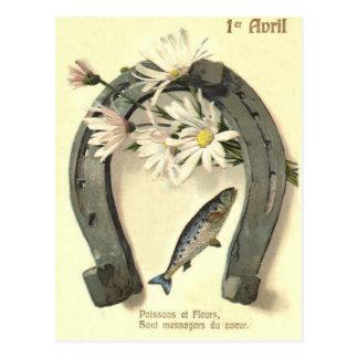 Cartão Postal Margarida da ferradura dos peixes