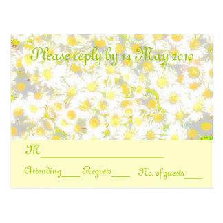 Cartão Postal Margarida RSVP da margarida