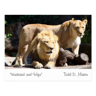 """Cartão Postal """"Marido e esposa"""" perto: Todd D. Martin"""