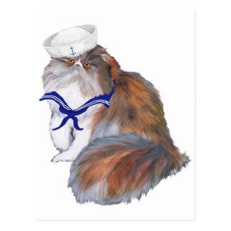 Cartão Postal Marinheiro do gato persa da chita