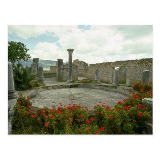 Cartão Postal Marrocos branco, flores romanas da ruína