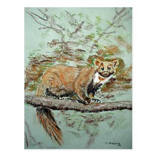 Cartão Postal Marten de faia