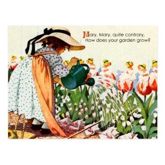 Cartão Postal Mary, Mary, bastante contrariamente